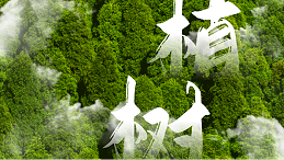 今天植树节,南阳易佰福食品和您一起呵护生命的绿色!